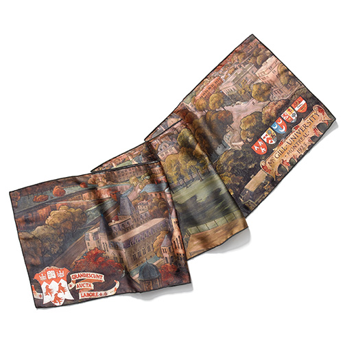 Bird's-Eye View of McGill Rectangular Silk-Touch Scarf